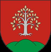 Képviselőtestület
