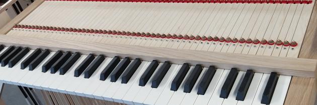 Készül az orgona!